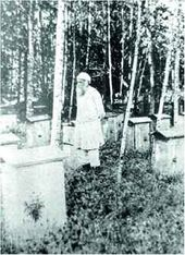 Nikolai Ge in the apiary. Ivanovsky farm. Summer 1891