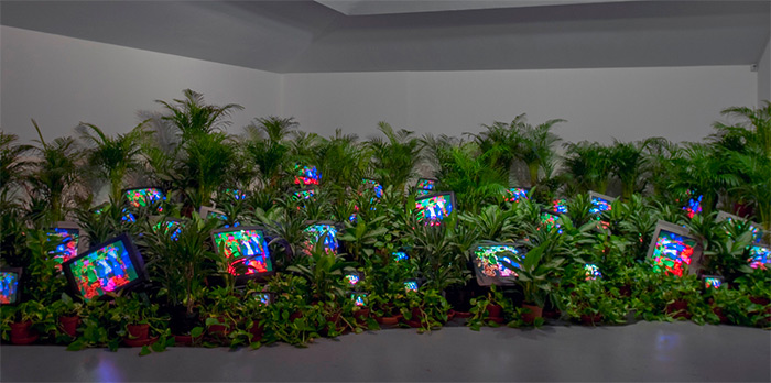 Nam June Paik, TV Garden 1974-77 (2002)