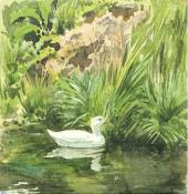 "The White Duck. Study for the illustration for the fairy tale ""The White Duck""."