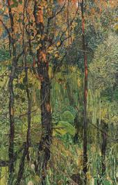 Overgrown Swamp. 1917
