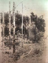 Trail in a Forest. Rossiya Magazine (Moscow, 1884).