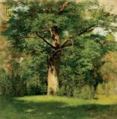 Isaac LEVITAN. Oak Tree. 1880