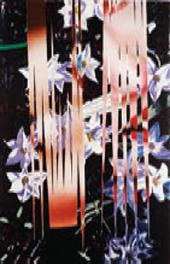 JAMES ROSENQUIST. NIGHT TRANSITIONS. 1985