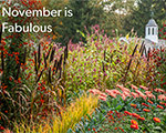 November is fabulous at Hillwood