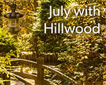 July with Hillwood: New Virtual Programs