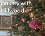 January with Hillwood: Virtual Programs and Content from Home