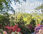 April is beautiful at Hillwood