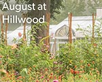 August is beautiful at Hillwood