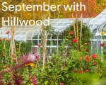 September is beautiful at Hillwood